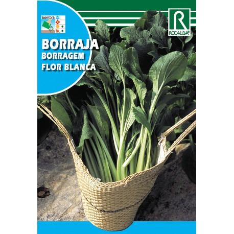 BORRAJA FLOR BLANCA, 25 GR