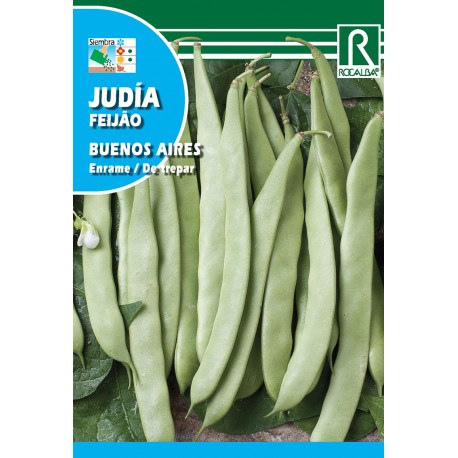 JUDIA BUENOS AIRES VERDE, 250 GR
