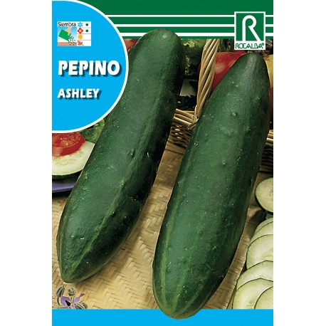 PEPINO ASHLEY, 10 GR