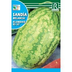 SANDIA KLONDIKE RS 57