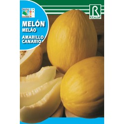 MELON AMARILLO CANARIO, 25 GR