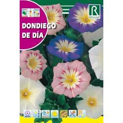 DONDIEGO DE DIA