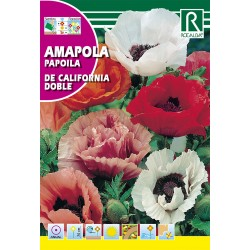 AMAPOLA de California Doble, Variada