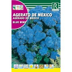 AGERATO DE MÉXICO