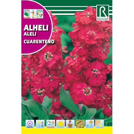 ALHELÍ Rojo